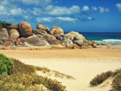 Camping at Wilsons Prom – Everything You Need To Know